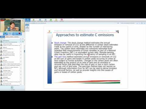 08 03 17 satellite remote sensing in forest biomass burning and carbon emission monitoring