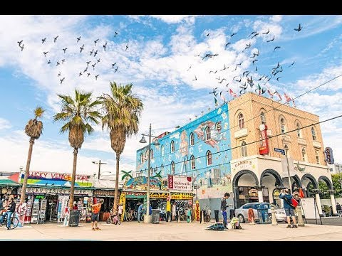 VENICE BEACH TRAVEL GUIDE // LOS ANGELES // 13 EPIC ACTIVITIES