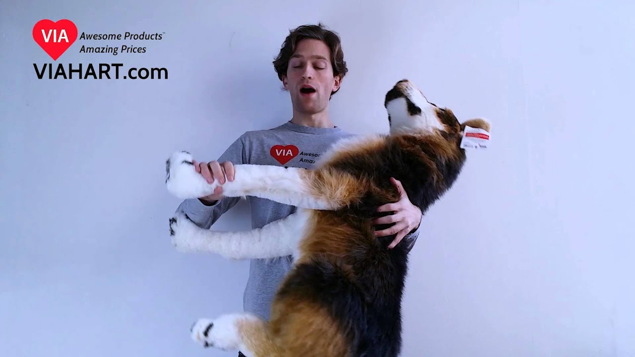 Viahart 3 Foot Snow Dog Stuffed Animal Plush Hank The Husky
