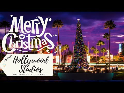 Hollywood Studios Beginning to look a lot like Christmas!!