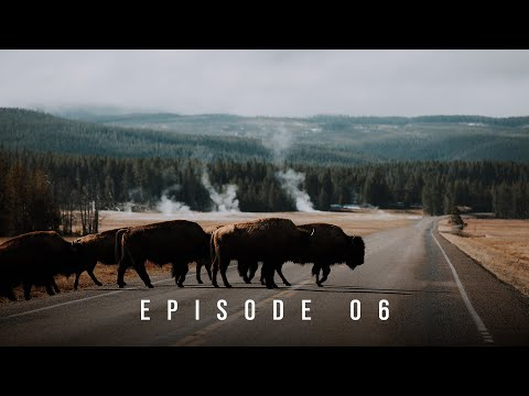 VLOG 6 - Bison & Hot Springs at Yellowstone National Park