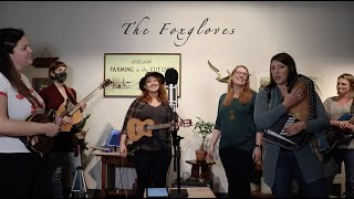 The Foxgloves Band