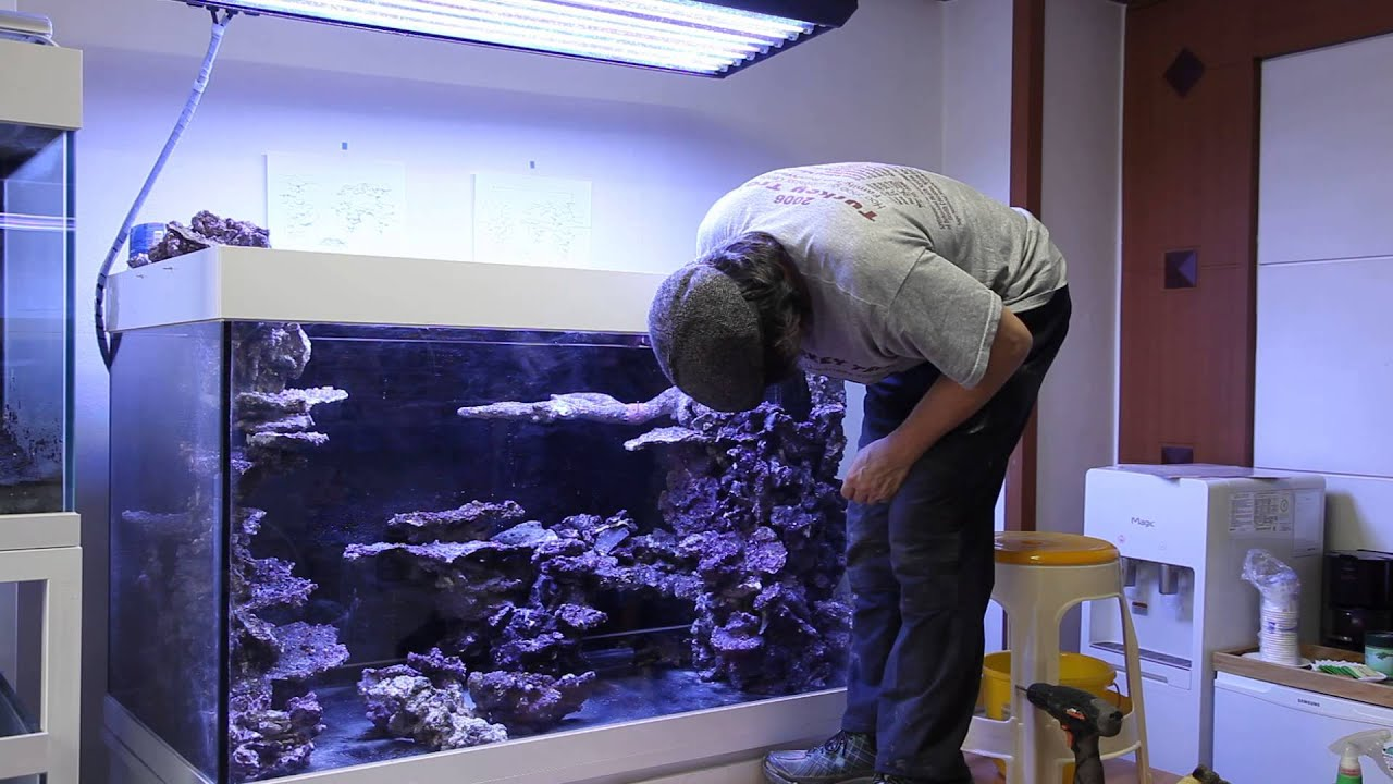 Video Real Reef Aquascaping With Youngil Moon