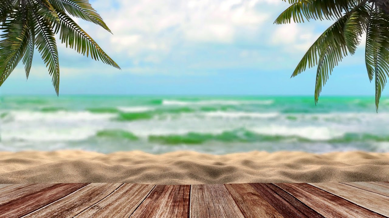 Tropical Video Background No Ads Youtube Almost files can be used for commercial. tropical video background no ads