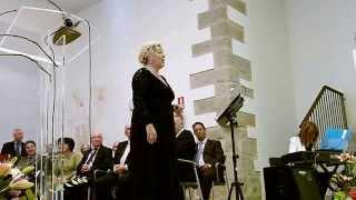 Música lírica en la Diputación de Ávila