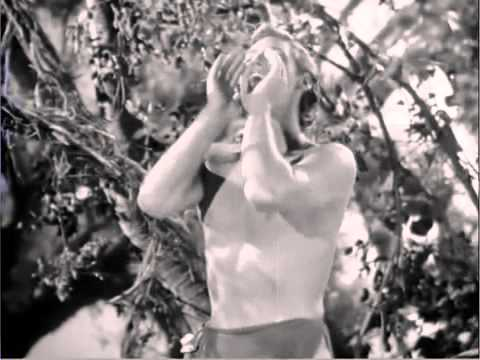 Tarzan Escapes 1936 2 Tarzan and Jane Waking in the Treehouse adlı videonun  kopyası