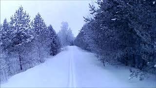 Размышления про ютуб,мой канал,интернет...(на лыжах прогулка)