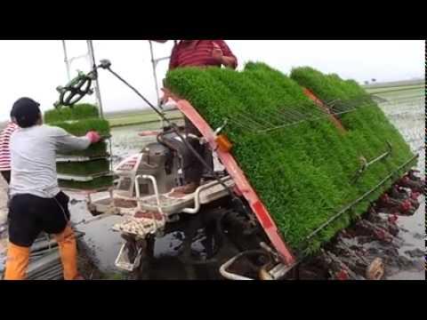 Awesome!!! Cara Menanam Padi dengan Mesin Di Jepang