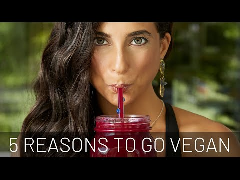 5 Simple Reasons to Go Vegan + Beginner's Tips