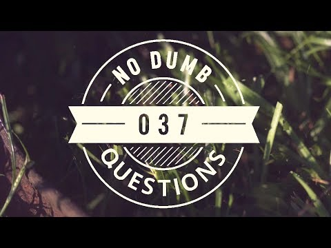 No Dumb Questions 037 - Media, Magic and Managua