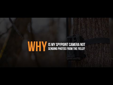 VIDEO: Why is my SPYPOINT Camera Not Sending Photos From the Field