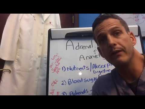 Adrenal Fatigue And Anxiety, how are they related?
