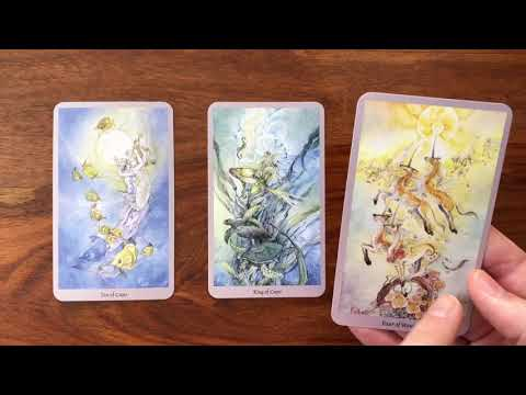 Daily Tarot Reading for 26 February 2018 | Gregory Scott Tarot