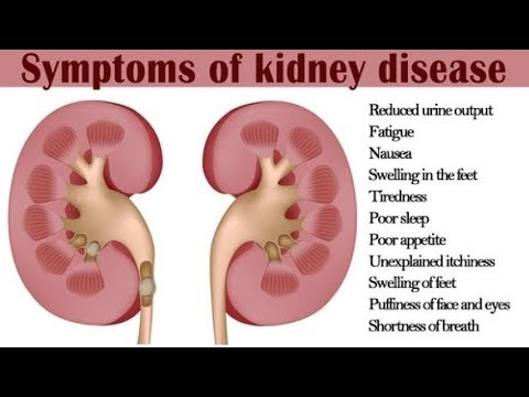 how-to-cure-kidney-disease-naturally