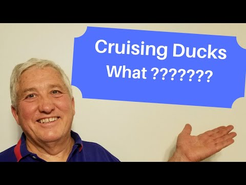 Cruising Ducks Who Hides Them And Why