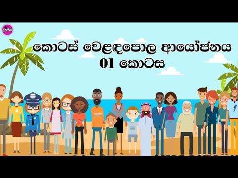 Share Market Investing 01 (Sinhala)