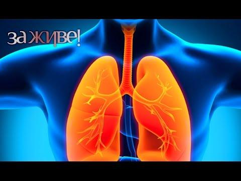 Пневмония. Пульмонология -