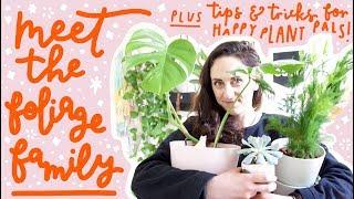 Meet the foliage family! // A home jungle tour PLUS plant pleasing tips & tricks