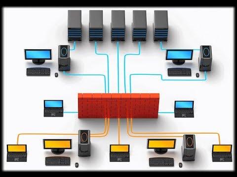 Cara Kerja Perangkat Jaringan Hub Switch Repeater Bridge Dan