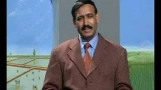 Balanced feed for goat in Khoshab Pakistan Dr. Ashraf Sahibzada