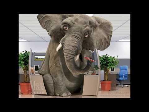 Geo Chem Dump Alert - Elephant in Room - BLACK CHEMTRAILS GEO ENGINEERING 12/14/2016