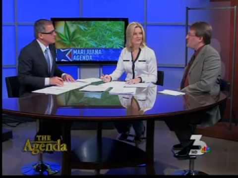 Rob Kampia Discusses Medical Marijuana in Nevada