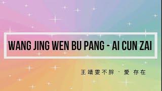 王靖雯不胖 Wang Jing Wen Bu Pang – 愛 存在 Ai Cun Zai Mandarin, Pinyin And English Translation