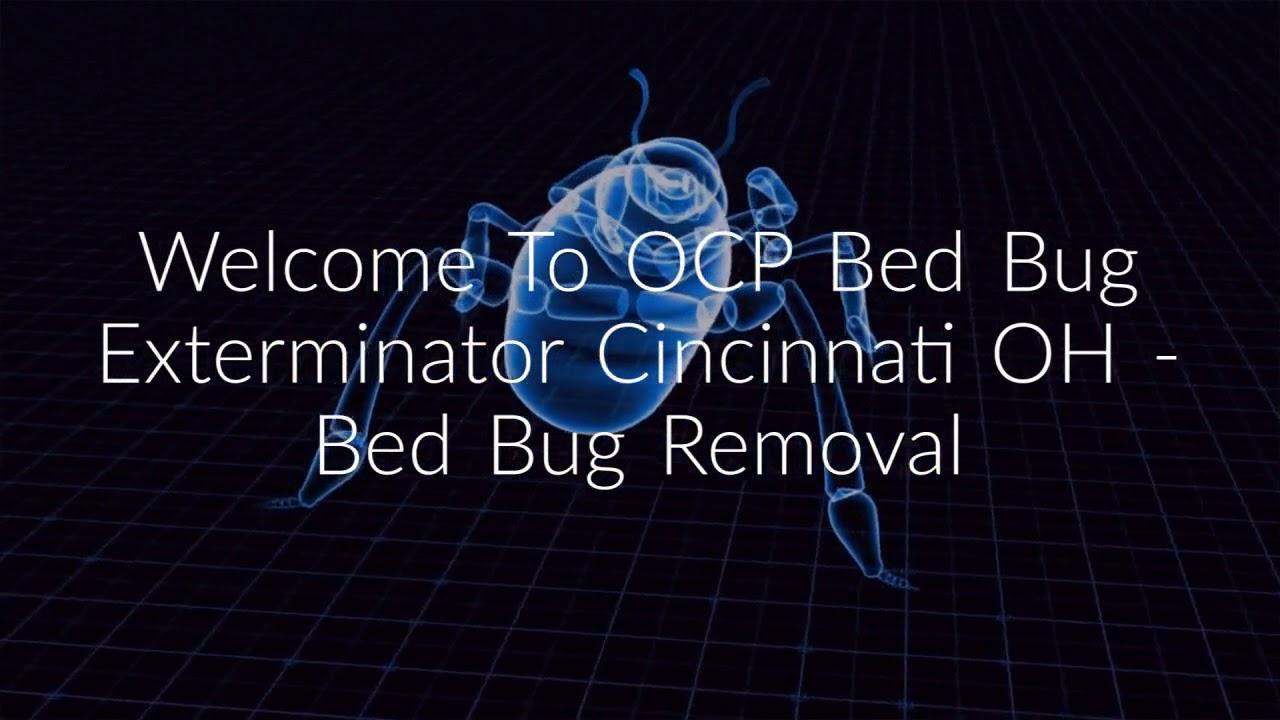 OCP Bed Bug Exterminator in Cincinnati, OH