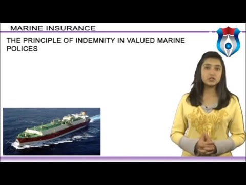 Best Companies for Marine Insurance