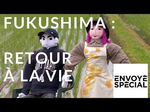 Envoyé spécial. Fukushima