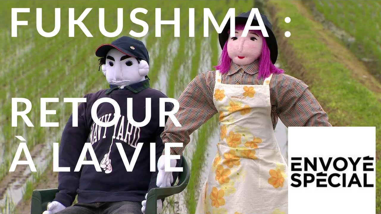 Envoyé spécial. Fukushima : retour à la vie - 8 mars 2018 (France 2)