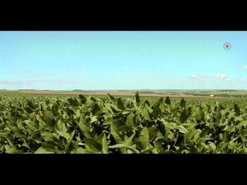 Penergetic do Brasil - Por uma agricultura mais inteligente.