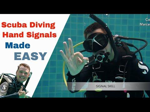 Scuba Diving Hand Signals 👌 How Divers Communicate Underwater!