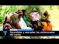 Telenoche investiga - Escondidas y aterradas: las embarazadas del monte FORMOSA
