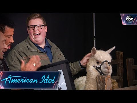 Noah Davis Gets His Alpaca on American Idol - Finale - American Idol 2018 on ABC