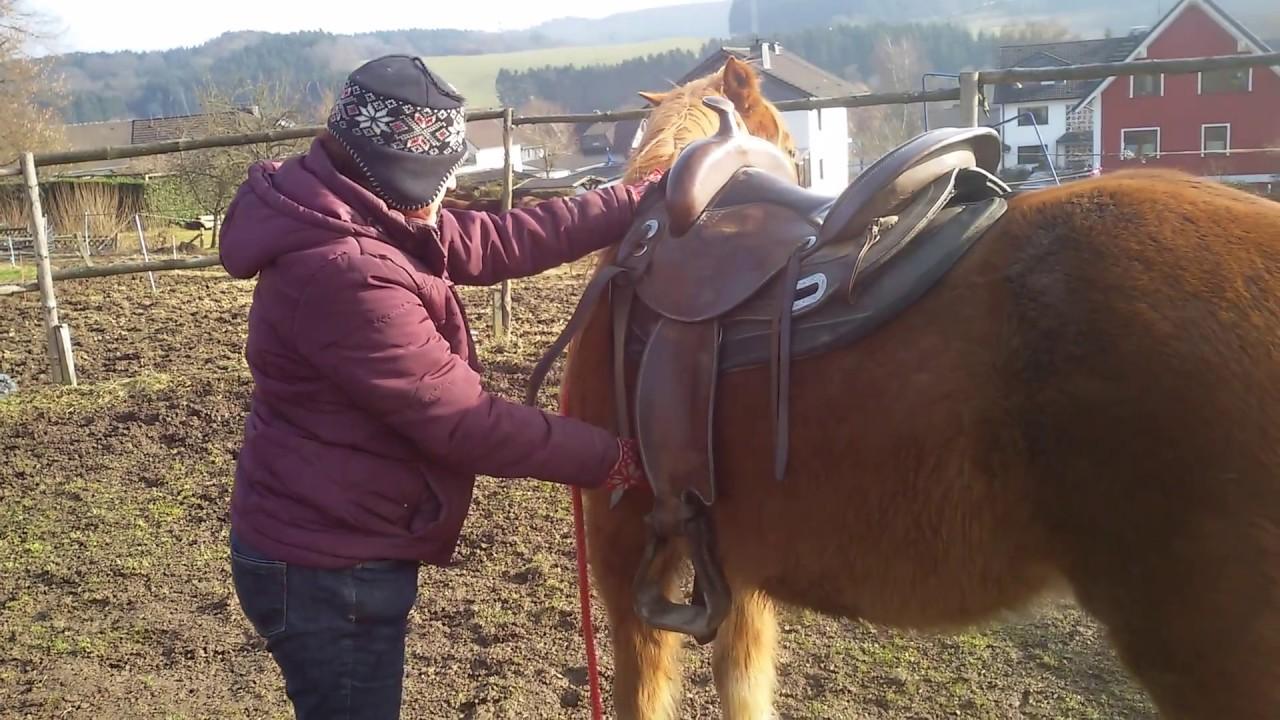 was tun wenn das pferd gurtzwang hat horsemanship. Black Bedroom Furniture Sets. Home Design Ideas