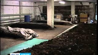 Производство биогумуса в Шуе(Как сделать северную землю плодовитой? В посёлке Шуя начали производство биогумуса. Благодаря которому,..., 2013-08-05T13:13:07.000Z)