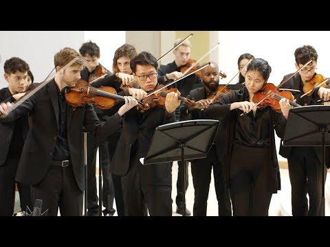 Gabriella Smith: Hexacorallia • Kaleidoscope Chamber Orchestra