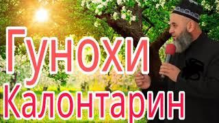 ХОЧИ МИРЗО ГУНОХИ КАЛОНТАРИН