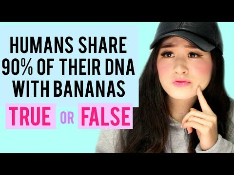 Can You Tell If These Facts Are True Or False?