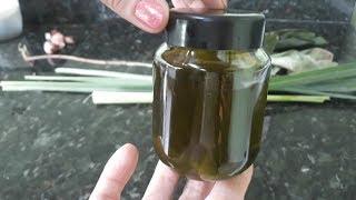 Como fazer óleo essencial  e essencia  de qualquer  planta ( muito  facil e rápido de fazer)