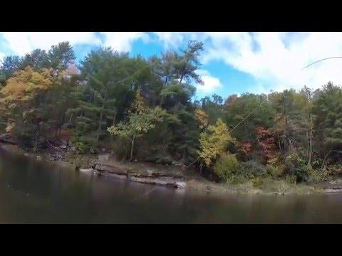 Pine Creek Special