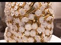 SLOW   Eleven Women and 400 Daisies by Atelier Ted Noten