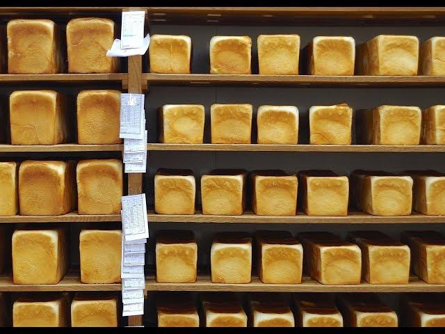 あーこれ帰り道にパンを買いに行きたくなるやつだ!映画『74歳のペリカンはパンを売る。』予告編
