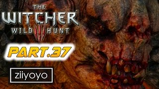 The witcher 3 wild hunt Gameplay Walkthrough Part 37[1080p HD 60FPS PC ULTRA] - No Commentary