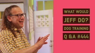 What Would Jeff Do? Dog Training Q & A #444