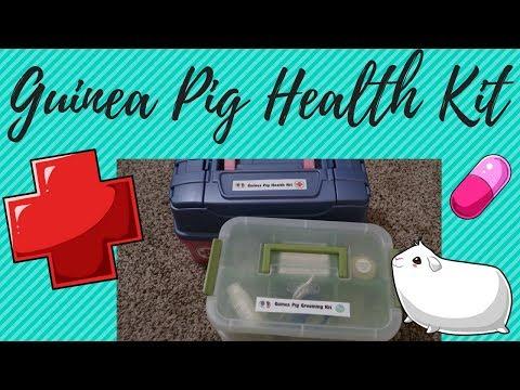 Guinea Pig Health Kit | Health & Grooming Series
