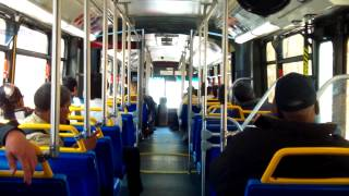 Bee-Line Bus Neoplan USA AN460 Artic Route 1W Bus Ride:Part 1