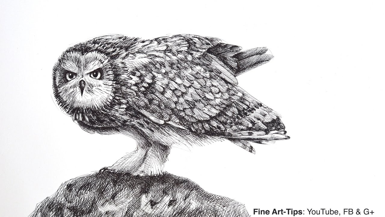 How to Draw an Owl With the Justus 95 Fountain Pen (Angry ...