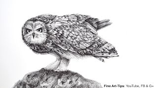 How to Draw an Owl With the Justus 95 Fountain Pen (Angry Bird)